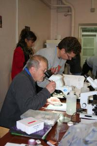 Dr. A.B. Tzetlin and participants of the previous field schools
